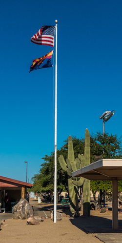Flagpole and cactus at Ben Avery's Shooting Ctr., Phoenix, AZ