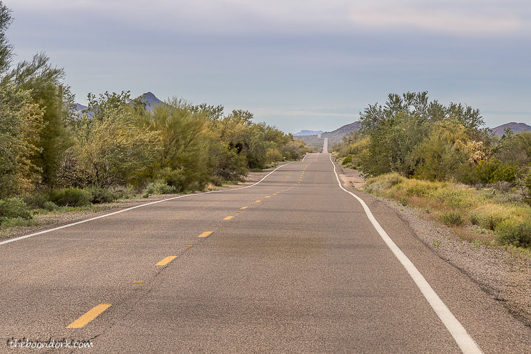 The road through organ pipe cactus National Monument
