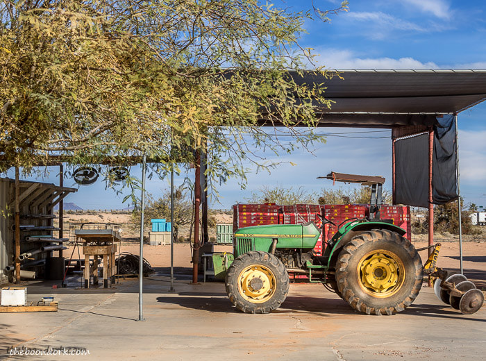Date farm Dateland Arizona