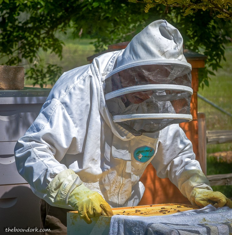 Beekeeper in Denver