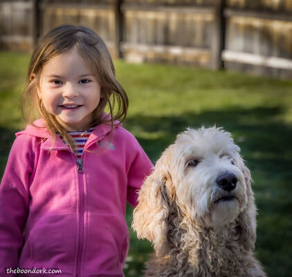 Little girl and dog Picture