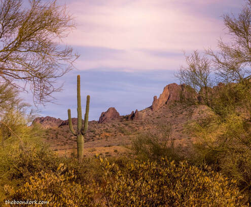 Superstition Mountains Arizona Picture