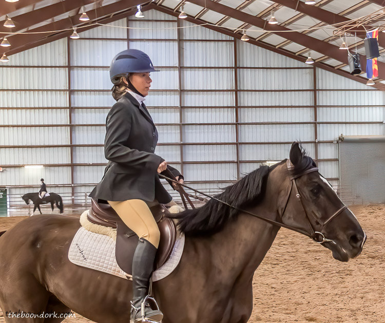 dressage riding Tucson Arizona